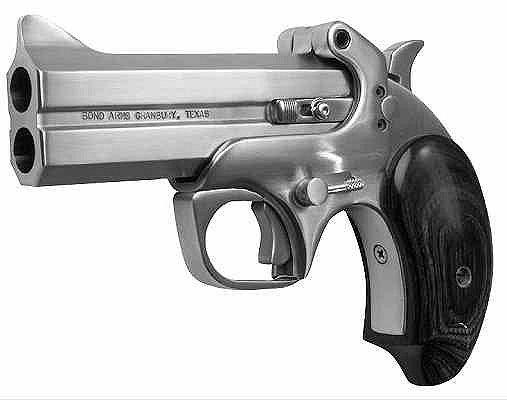 Bond Arms Texas Defender 22lr 3""