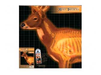 Champion Deer X-ray Target 6/pk