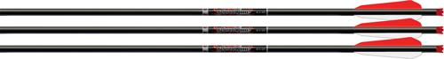 Easton Xbow Bolt Bloodline 22""