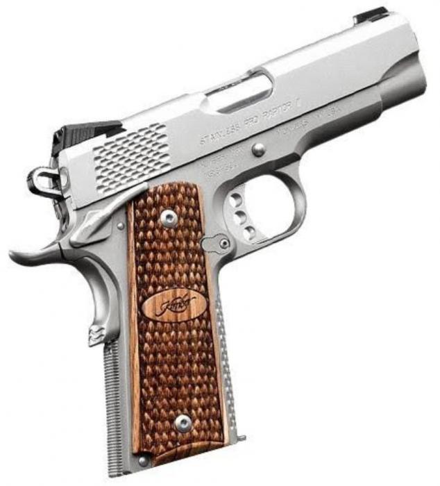 Pro Raptor II 9mm (ns)